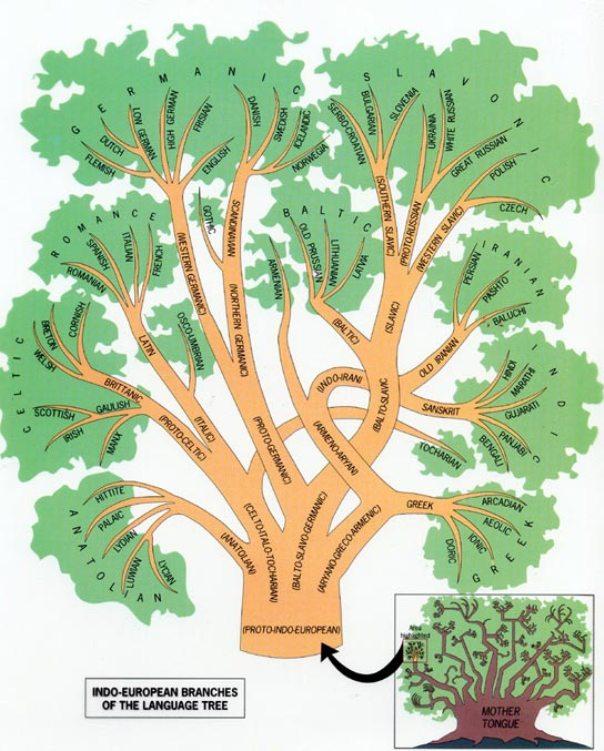 language-family-tree