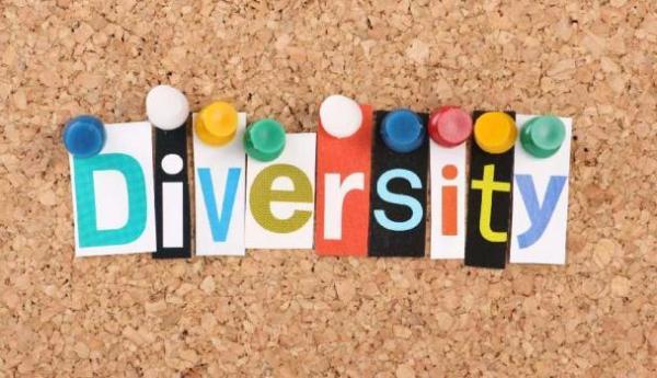diversity_board
