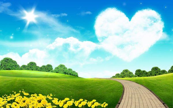 love-sky-garden