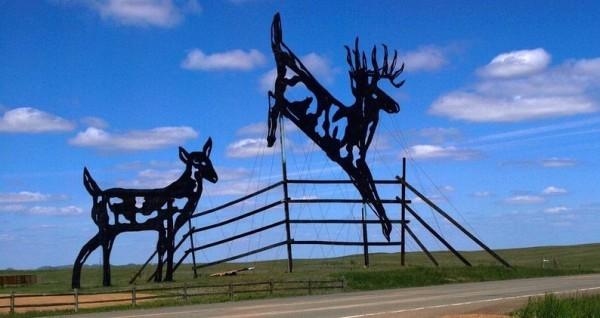 deer-crossing2